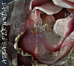 rid_copertina-disco-web
